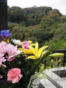 s-kusunoki_net_20141026_01